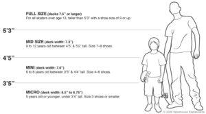 Tableau des dimensions des planches à roulettes